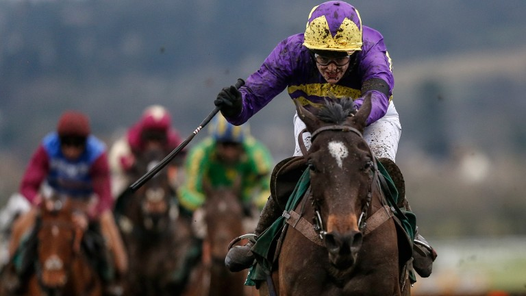 Lizzie Kelly clears the last on Agrapart in the Cleeve Hurdle at Cheltenham