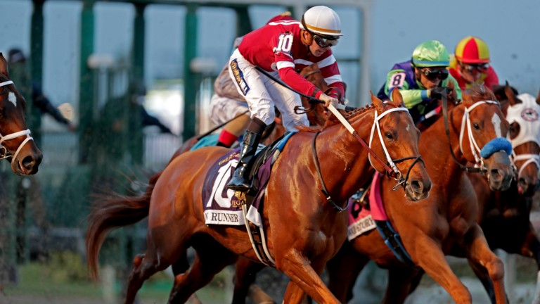 Gun Runner: winner of the Pegasus World Cup, in which all 12 runners raced on Lasix