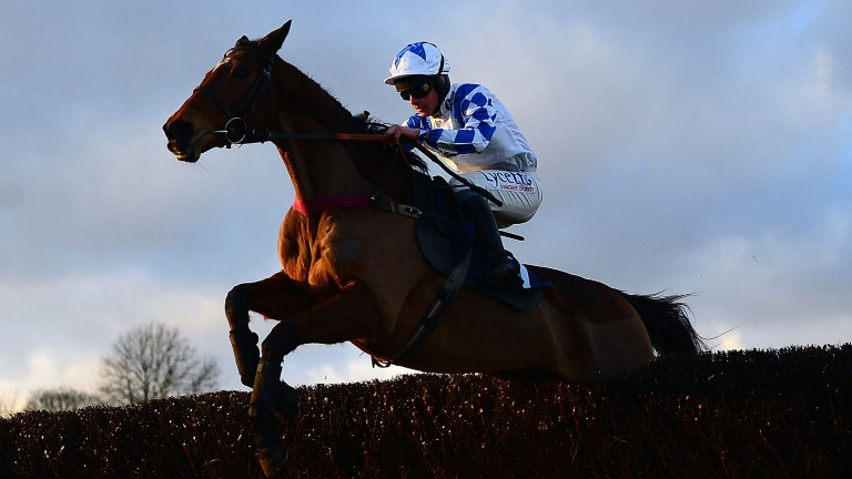 Becauseshesaidso: on his way to victory at Chepstow last time out