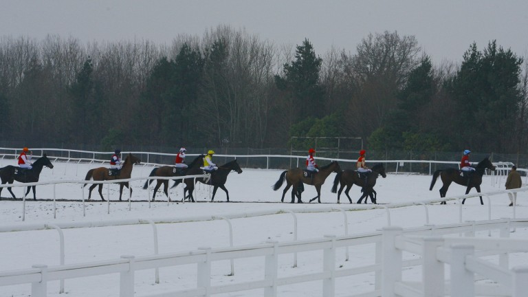 Lingfield in the snow: track officials will inspect at 8am for Saturday's meeting