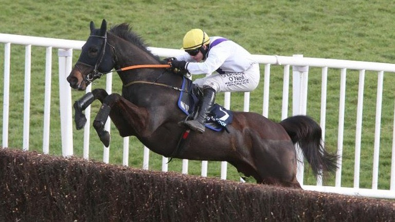 Solita jumps the last en route to winning a Grade B handicap chase at Fairyhouse