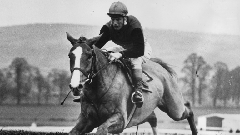 Flyingbolt and Pat Taaffe head for a 15-length victory in the 1966 Champion Chase at Cheltenham