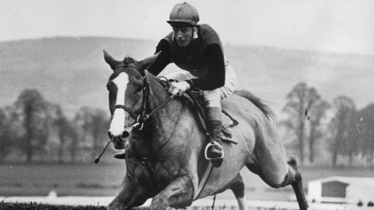 Flyingbolt: won the Irish Grand National under Pat Taaffe in 1966