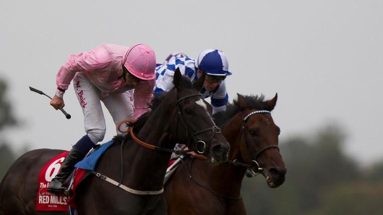 The Fugue (left) sees off Al Kazeem to take the Irish Champion Stakes