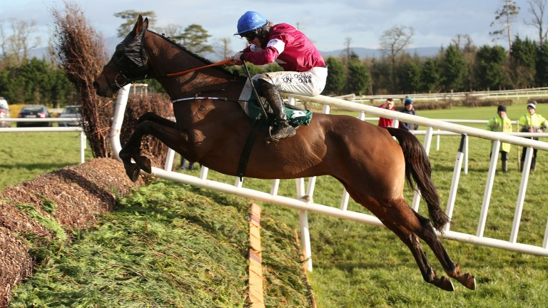 Monbeg Notorious: the Thyestes Chase winner will run in the Irish Grand National at Fairyhouse