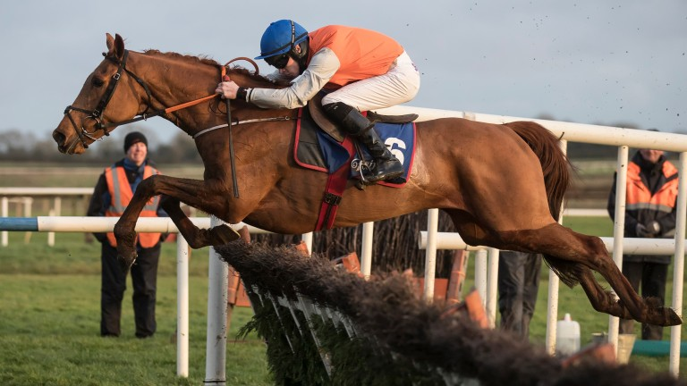 """Gordon Elliott on Poormans Hill: """"He has now won six times and is rated 121 over fences"""""""
