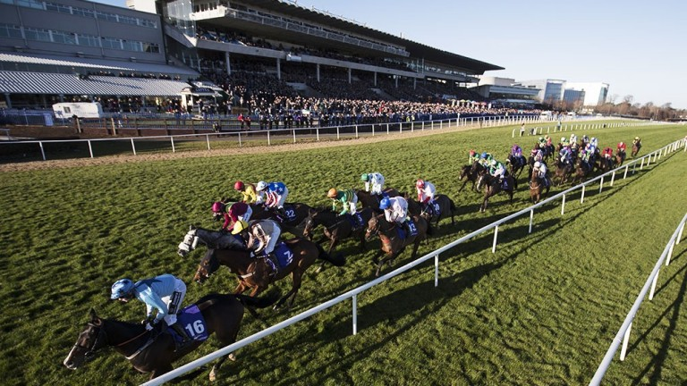 Leopardstown could get some sunny weather this weekend