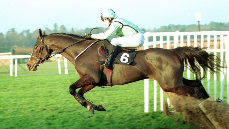 When he won the Tote Gold Trophy under Adrian Maguire, King Credo was trainer Steve Woodman's only winner of the entire 1992-93 season