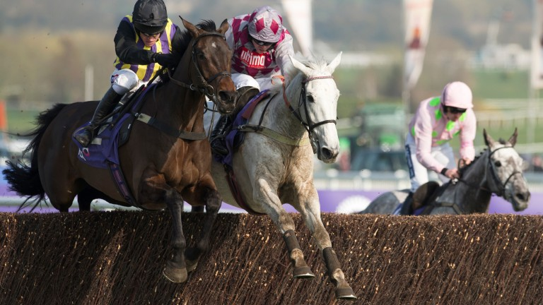 Smad Place and O'Faolains Boy go toe-to-toe in the 2014 RSA Chase at Cheltenham