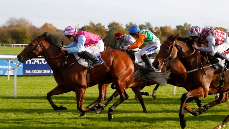 Fire Brigade: well beaten in the Lincoln but drier ground should be more in his favour