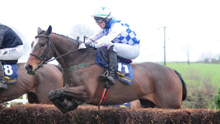 Ask Dillon en route to winning the five-year-old geldings' maiden at Nenagh on Sunday