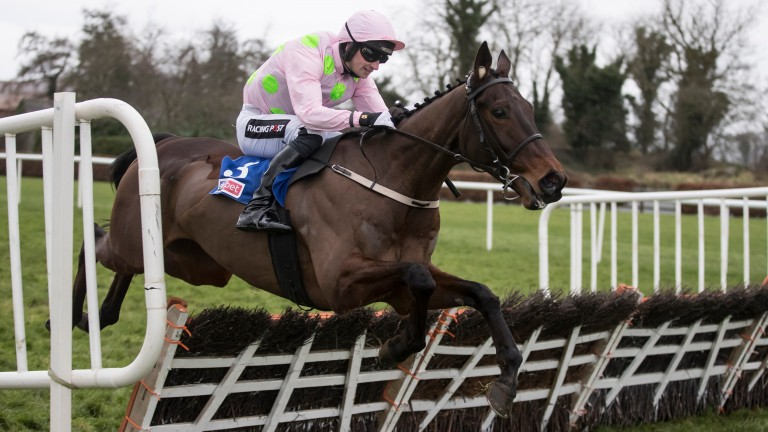 Supreme Novices' favourite Getabird clears the last on his way to Grade 2 success at Punchestown