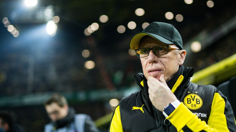 Peter Stoger ponders managerial life at Borussia Dortmund