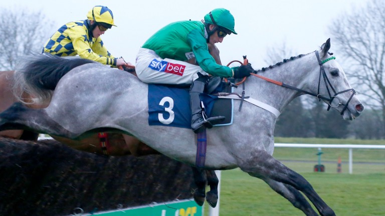 Terrefort made a good impression first time out at Huntingdon