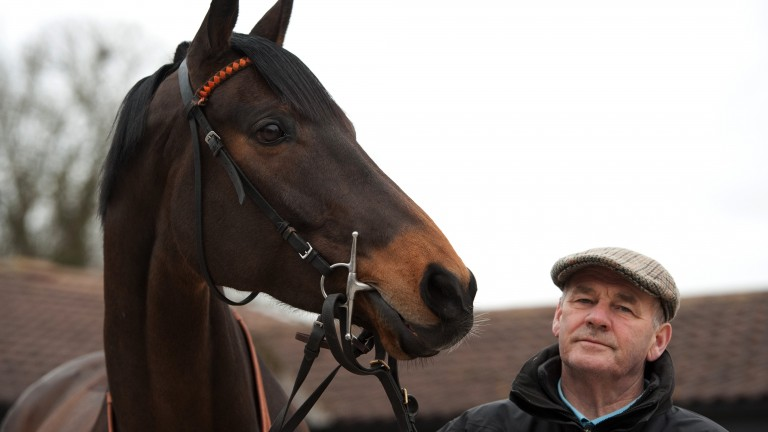 Malcolm Jefferson pictured with Cape Tribulation at Newstead Cottage Stables in Malton with the Pertemps Hurdle Final winner in 2012