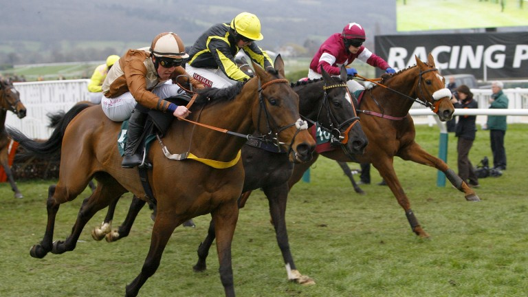 Attaglance: Malcolm Jefferson enjoyed a double at the Cheltenham Festival in 2012 with Attaglance (near) winning the Martin Pipe Conditional Jockeys' Handicap Hurdle under Harry Haynes