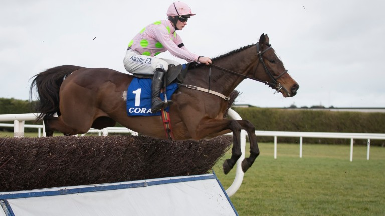 Min: cut for the Champion Chase after sparkling victory