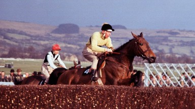 Arkle heads for victory over Mill House in the 1964 Gold Cup