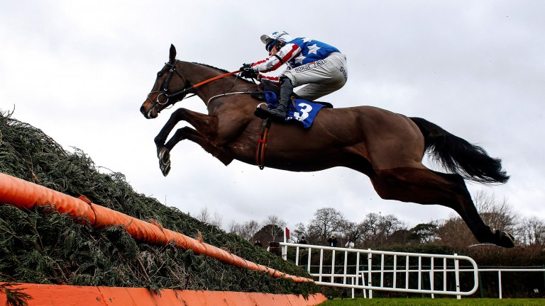 Special Tiara flies over a fence in last year's Dublin Chase