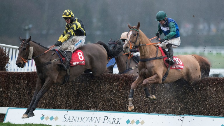 Ballydine (right): conditions look perfect for him
