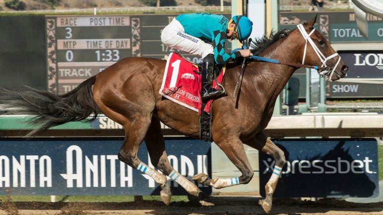 Roy H: has suffered a foot abscess