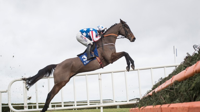 Special Tiara puts in a spectacular jump under Robbie Power at Leopardstown