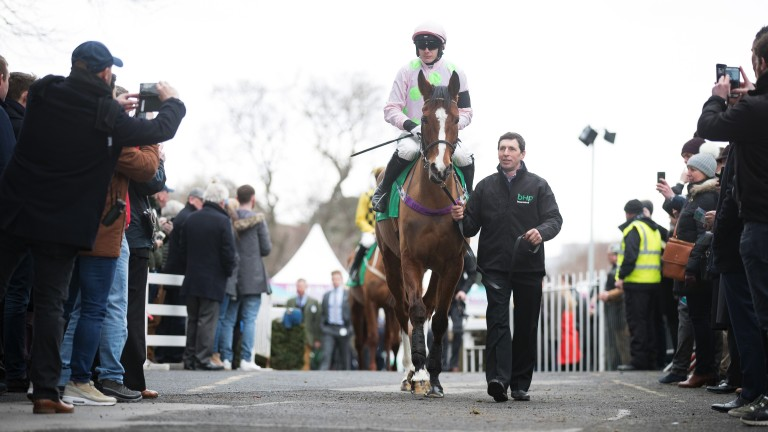 Faugheen: 'hopefully Cheltenham might reignite him a bit'