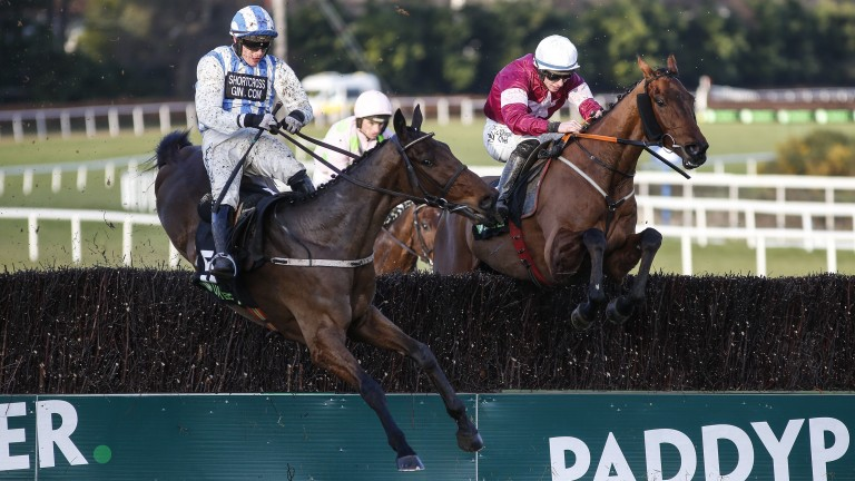 Killultagh Vic (left) makes a mistake before falling at the last in the Irish Gold Cup at Leopardstown