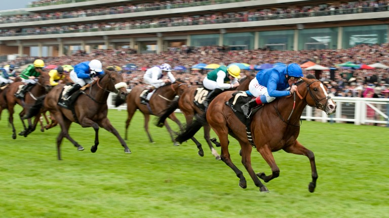 Tha'ir (Frankie Dettori) wins the 2012 Chesham Stakes at Royal Ascot in a former life with Saeed Bin Suroor