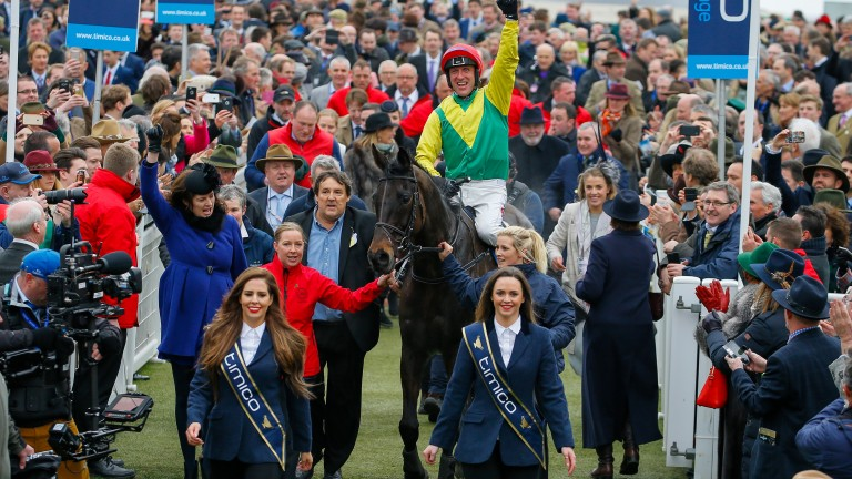 Cheltenham Gold Cup hero Sizing John is led in by women wearing sashes bearing the sponsor's name