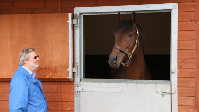 Al Kazeem made a successful return to the racetrack in 2014