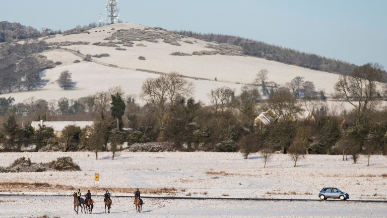 The show goes on as horses exercise on the Curragh following overnight snow