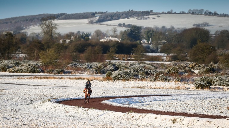 Winter has arrived at the Curragh with a covering of snow on the training grounds