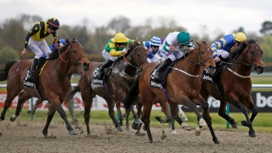 Kimberella (second right, green cap) wins the all-weather championship sprint final at Lingfield last year