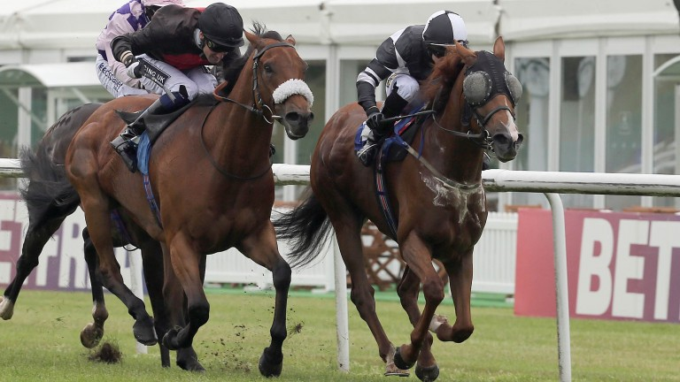 Outlaw Torn (right) has been in great form recently