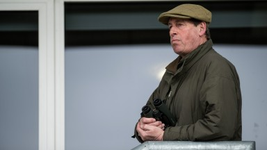 Interested observer: trainer Kim Bailey watches on as Vinndication extends his unbeaten run