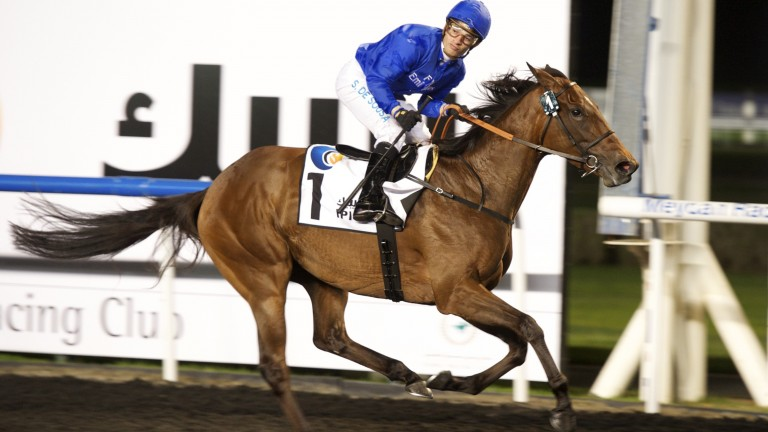 Ihtimal: won this race in 2013 for Saeed Bin Suroor