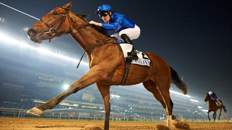 Winter Lightning storms clear in the UAE 1,000 Guineas