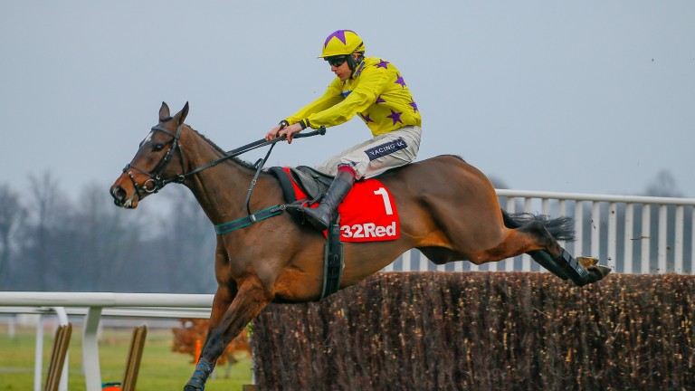 Fountains Windfall: a leading fancy for the RSA Chase