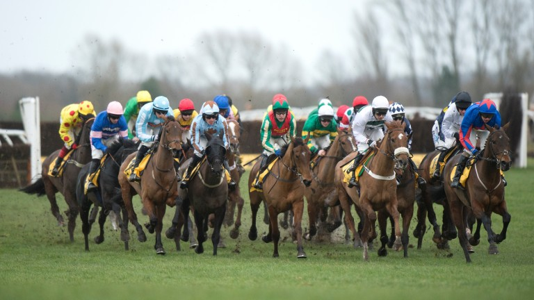 The Betfair Hurdle is the highlight of the day at Newbury