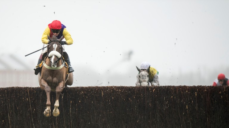 Native River (Richard Johnson) jumps the last fence and wins the Denman Chase