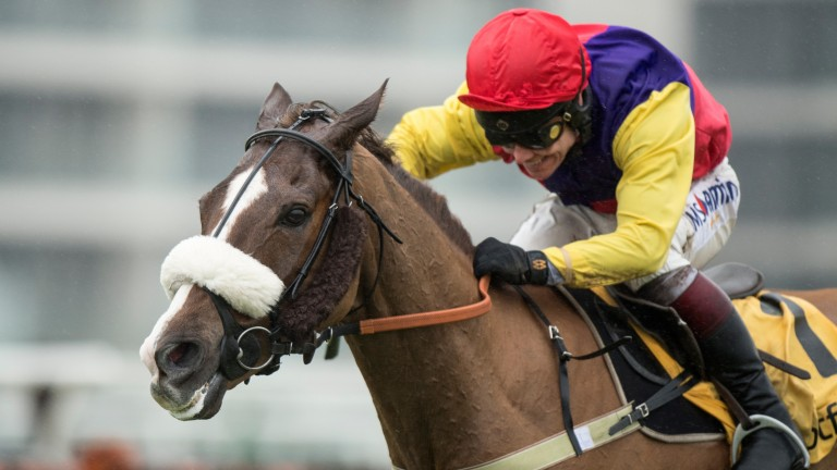 Native River will love any give in the ground at Cheltenham