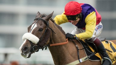 The riding style of Richard Johnson, pictured winning the Denman Chase on Native River, finds favour with Dinah Nicholson
