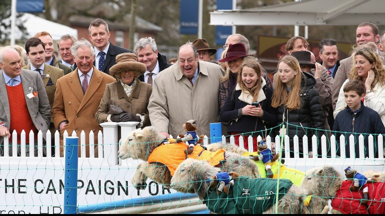 Happy baa'thday: Sir Nicholas Soames (centre), pictured watching the 'Lamb National' at Ascot, is 70