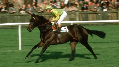 Gorytus and Willie Carson head to the start for the 1982 Dewhurst Stakes