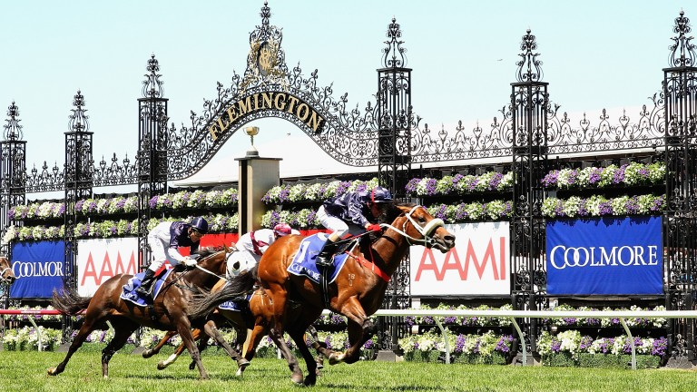 Flemington: the jewel in Racing Victoria's crown