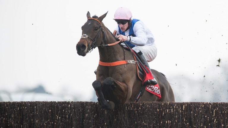 Waiting Patiently: second in the King George last time