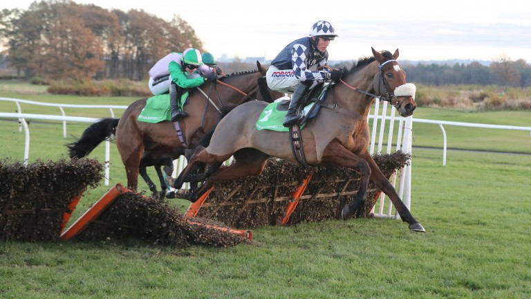 Irving: a first Grade 1 winner for Harry Cobden in the Fighting Fifth Hurdle in 2016