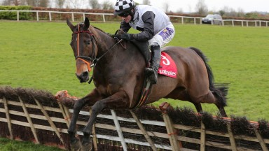 Dunguib and Brian O'Connell clear the last en route to victory in the Ladbrokes Boyne Hurdle