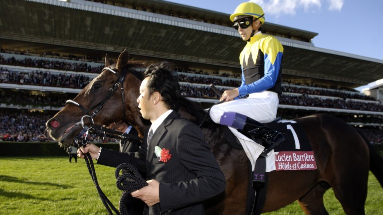 "Deep Impact: ""I rode him in all of his races. He was very strong indeed"""